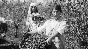 Early Agriculture in Eretz Israel